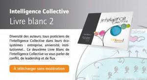 colligence_livre_blanc_intelligence_collective_2